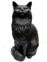 long haired bronze cat